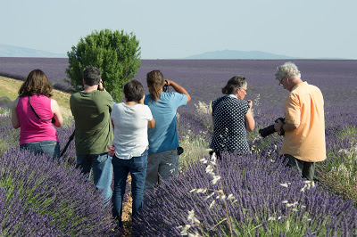 Střípky z Provence – díl první
