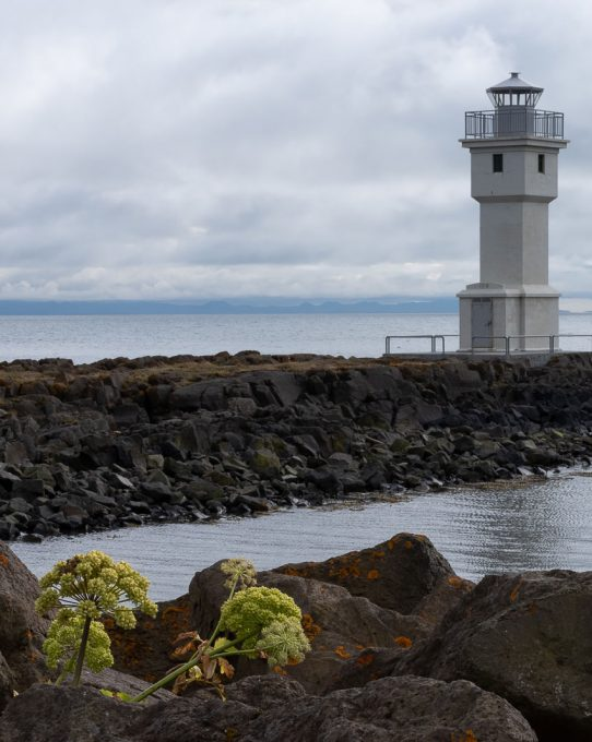 Fotografie z Islandu - 5. díl