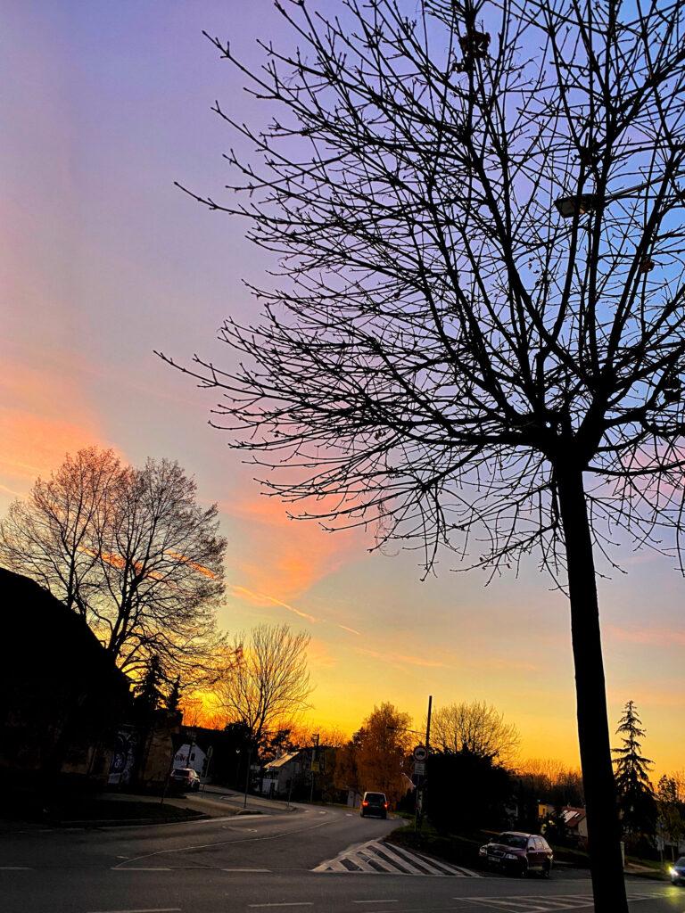 noční Jesenice se siluetami stromů, obloha je fialová oranžová, fotka ze série podzimní fotografie z Jesenice